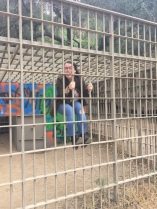 Oops...they locked me up again..